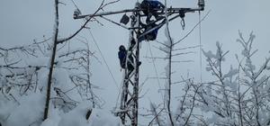 Köylüler elektriksiz kalmasın diye zorlu kış şartlarında direklere tırmandılar