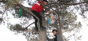 Gençler 3D yazıcıyla kuşlar için yemlik yaptı Soğuk kış günlerinde yiyecek bulamayan kuşlar için ağaçlara yemlik astılar
