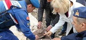 Buse'yi arama çalışmalarında yeni gelişme: Küpesi ve çantası bulundu Hortum nedeniyle kopan demir sac çatının otomobile çarparak dereye sürüklendiği ihtimali üzerinde duruluyor