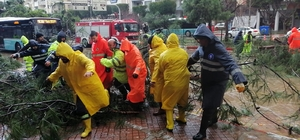 Fırtına ağaçları kökünden söktü, seyir halindeki otomobillerin üzerine devirdi