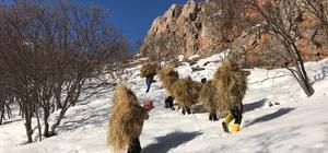 Bingöl'de bu kez avcılar doğaya yem bıraktı