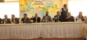 Mersin limonu, limonata ve dondurmayla marka oluyor Türkiye'nin limon başkenti Mersin, limonata ve dondurmayla limonu markalaştırma yolunda ilk adımı attı Mersin limonundan üretilen limonata ve limon dondurması, 'Merlim' ve 'Mersin Limonatası' marka adlarıyla üretilerek Türkiye ve dünya pazarlarına sunulacak