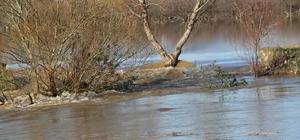 Taşkın yaşanan Büyük Menderes nehrinde çalışma başlatıldı