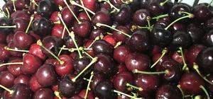 Yaş meyve sektörü 2023 hedeflerine üretici-ihracatçı birlikte ulaşacak