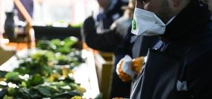 Belediyeden kompost ve solucan gübre tesisi ile engellilere iş kapısı Buca Belediyesi Kompost ve Solucan Gübre Tesisi'nde çalışacak 15 engelli vatandaş, tesiste 5 yıl çalıştıktan sonra emeklilik hakkı kazanacak