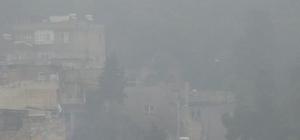 Şanlıurfa'da yoğun sis etkili oldu Şanlıurfa'da yoğun sis vatandaşları olumsuz etkiledi