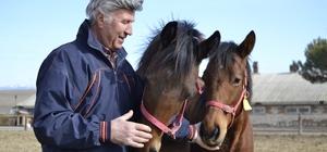 """Hem dost hem şifa kaynağı İnsanların sadık dostu ve binek hayvanı olan atlar, binicilerinin bedensel ve ruhsal sağlığına büyük fayda sağlıyor Atlı Spor Kulübü sahibi Yunus Güçlü, """"Ata binmenin Down sendromlu çocuklara çok faydası var"""" """"10 dakika ata bineyim bir daha ağrım olmuyor"""""""