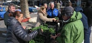 Foça Belediyesi'nden vatandaşlara Sevgililer Günü çiçeği