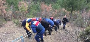 Sinop'ta inek kurtarma operasyonu