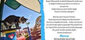 """Dünyanın ilk kedi muhtarı Mersin'den çıktı Mersin Büyükşehir Belediyesi tarafından, kedilerin barış, huzur ve kardeşlik içerisinde yaşatıldığı Miyav Park'ta Dünya Kediler Günü'nde muhtarlık seçimi gerçekleştirildi Seçimde Miyav Park sakinlerinin muhtarı yüzde 38 oy oranı ile rakiplerini geçen """"Mırmır"""" oldu"""