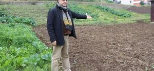"""Dünyada patates üretimi yapan ülkelerde """"Patates Siğili Hastalığı"""" görülüyor Tarım ve Orman Bakanlığının 25 ilde patates ekimi yapılmaması yönündeki kararı Trabzon'da yaklaşık 40 dekar alanda uygulanıyor Trabzon Ziraat Mühendisleri Odası Başkan Yardımcısı Avni Aydın: """"Dünyada patates üretimi yapılan  tüm ülkelerde söz konusu hastalık mevcut. Bunların mücadelesi bizim ülkemizde olduğu gibi karantina tedbirleriyle yapılmaktadır"""" """"Dünyada bu bahsedilen hastalıkların temel korunma yolu karantina tedbiridir"""""""