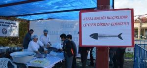 Dalyan Kefal Balığı Festivali ile coşacak