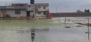 (Özel) Mahalleli iki aydır su içinde yaşıyor