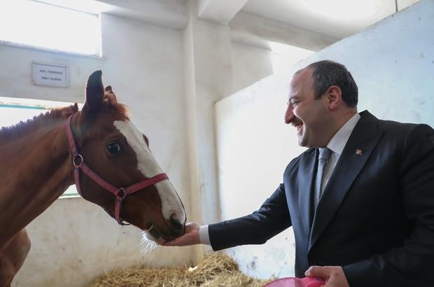 """Osmanlı'nın ilk harasında hipoterapi Bakan Varank'tan Atçılık Okuluna sürpriz ziyaret Sanayi ve Teknoloji Bakanı Mustafa Varank; """"Engelliler için özel bir tesis kurarak dünyaya açacağız"""""""