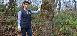 Ordu'nun ormanları kadın şeften soruluyor Kadın orman şefi, kar-kış, yağmur-çamur demeden yürüttüğü mesleği ile hemcinslerine örnek oluyor