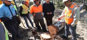 Mihalıççık Ormanlarında Üretim Tatbikatı Yapıldı