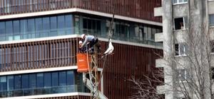Elektrik kablosuna takılan martı 7 saat sonra kurtarıldı Martıyı kurtarmak için görevliler ve vatandaşlar seferber oldu