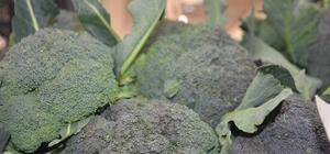 """Besin deposu brokoliye ilgi az Brokolide satışlar yüzde 50 azaldı Brokoli satıcısı Renginaz Genç: """"İnsanlar pahalılıktan alamaz oldu"""""""