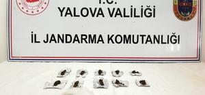 Yalova jandarmasından uyuşturucu operasyonu