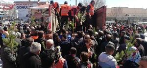 Erzincan'da fidan izdihamı