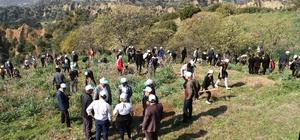 """Kuyucak'ta fidanlar toprakla buluştu Kuyucak Belediye Başkanı Metin Ertürk; """"Amacımız öğrencilerde ağaç ve orman sevgisini geliştirmek"""""""
