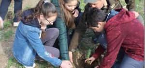 Öğrenciler, Dünya Ormancılık Günü'nde fidanları toprakla buluşturdu