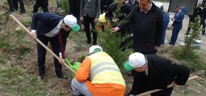 Bartın'da 'Adalet Ormanı' oluşturuldu