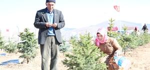 Kırşehir'de şehitler hatıra ormanı açıldı