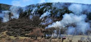Seyitgazi Yarbasan'da orman yangını Orman İşletme Şefliği ekiplerinin çabasıyla alevler söndürüldü, büyük tehlike atlatıldı