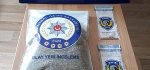 Tokat'ta bonzai operasyonu: 2 tutuklama