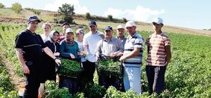 Sanayi bölgesinin ham madde ihtiyacı yerel tohumlar ile karşılanacak