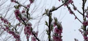 Mut'ta, gece başlayan kar yağışı doğayı beyaza bürüdü