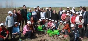 Alpu ilçesinde mera ıslah çalışmalarına başlandı Ağır otlatma sonucu zayıflamış mera alanlarının yeniden üretime kazandırılması amaçlanıyor