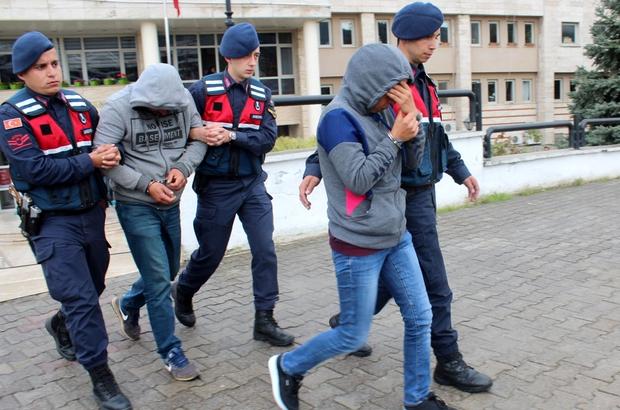Akbük Koyu'ndaki ağaç katliamıyla ilgili 3 tutuklama ile ilgili görsel sonucu