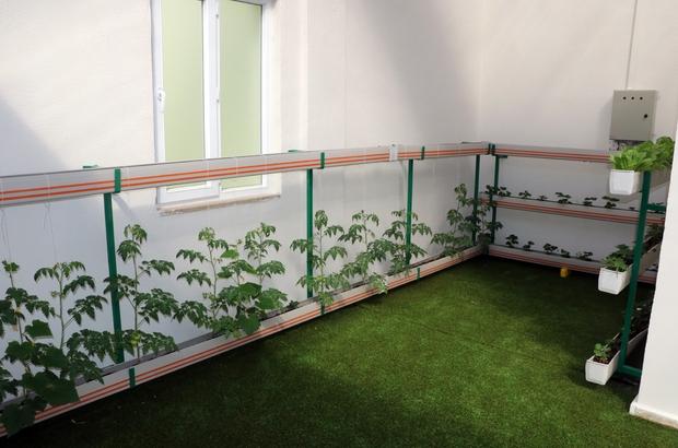Anaokulunun çatısına 'Tarım Atölyesi' kuruldu
