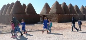 Türkiye'nin en genç ili Şanlıurfa
