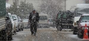 Kar yağışına hazırlıksız yakalandılar Yaylaya çıkarılan büyükbaş hayvanlar ahırlara geri götürüldü