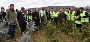 Orman Fakültesi öğrencileri Eskişehir'de