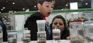 Çocuklar festivalde hayvan sevgisini öğreniyor