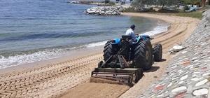 Yalova Armutlu sahillerinde bahar temizliği başladı