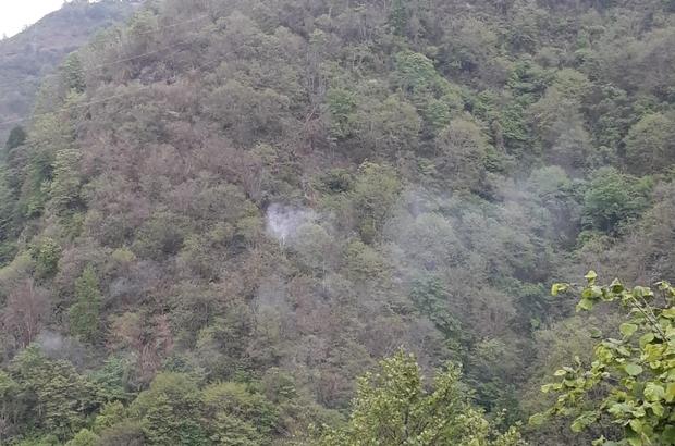 Giresun'daki orman yangını Giresun'un Espiye ilçesinde dün öğle saatlerinde başlayan orman yangının sabah saatlerinde başlayan yağmurla söndü