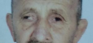 Ağaç budarken merdivenden düşen yaşlı adam hayatını kaybetti