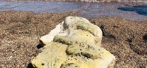 Denizde yüzerken kadın heykeli buldu