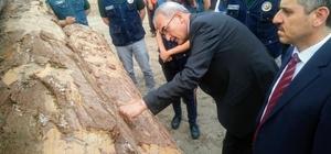 Orman Genel Müdürü Karacabey, Kastamonu'yu ziyaret etti