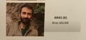Birer birer teslim oluyorlar İranlı 'Kawa' kod adlı PKK'lı Behrüz Düdükkanlı isimli teröristin ardından 'Aras' da teslim oldu Giresun'un Espiye ilçesi kırsalında geçtiğimiz 17 Mayıs günü teslim olan Doğu Karadeniz'deki kalan 2 teröristten biri olan PKK'lı Behrüz Düdükkanlı'nın ardından kalan 2. terörist 'Aras' kod adlı Aras Aslan da bugün teslim oldu