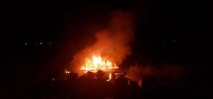Tarlaya uçan kamyon alev alev yandı: 3 yaralı Arı kovanları taşıyan kamyon lastiğinin patlaması sonucu tarlaya uçtu alev aldı