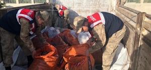 Jandarma ekipleri balık nöbetinde Bayram tatilinde görev başında olan jandarma ekipleri kaçak avlanan şahıslara göz açtırmıyor