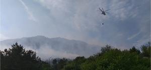 Bilecik'te dün kontrol altına alınan orman yangını tekrar başladı Bölgenin sarp ve kayalık, havanın da rüzgârlı olması ekiplerin işini zorlaştırıyor Çevre il ve ilçelerden ekipler söndürme çalışmalarına destek veriyor