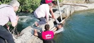 Sulama kanalının düştü Ortaca'da tarla sulamak için açılan su bendine düşen ve akıntıya kapılan vatandaşı Büyükşehir Belediyesi Ortaca İtfaiye Grup Amirliği ekipleri kurtardı.
