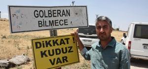 Diyarbakır'da kuduz alarmı Kuduz tilki köpeği, köpek de sahibinin oğlunu ısırdı Kuduzun ortaya çıktığı köy, 6 ay boyunca karantinaya alındı